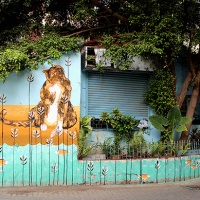 art focus – curated bandra street art walk – st+art mumbai