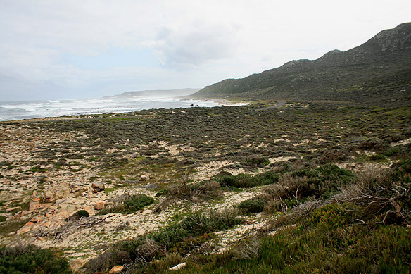 capepoint3