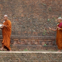 in search of buddha's sarnath: the traveller's guide