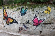 One is aptly met with butterflies as one enters Maharishi Mahesh Yogi's Ashram on the foothills of the Himalayas in Rishikesh.