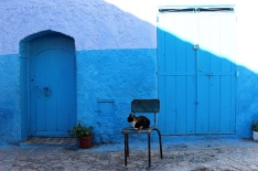Chefchaouen, where the ordinary smeared with swathes of blue becomes extraordinary.