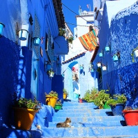 the story behind chefchaouen, the blue pearl of the rif mountains