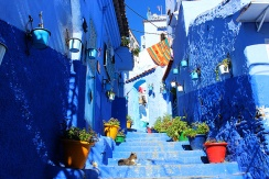 Looks familiar? This is Chefchaouen's most Instagrammed alley. It lies just outside the Plaza.
