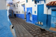 The blue paint, now synonymous with Chefchaouen, was only introduced in the 1930s.
