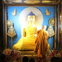 buddha's bodh gaya: the sacred hidden treasures of mahabodhi temple complex