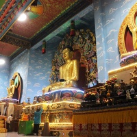 temple-hopping in bodh gaya: from tibet to japan