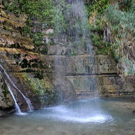 Ein Gedi was declared a nature reserve in 1971 because of its combination of nature, wildlife, history, and archaeology.