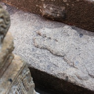 Look what I found! A crocodile carved on the last set of steps leading to the main temple.